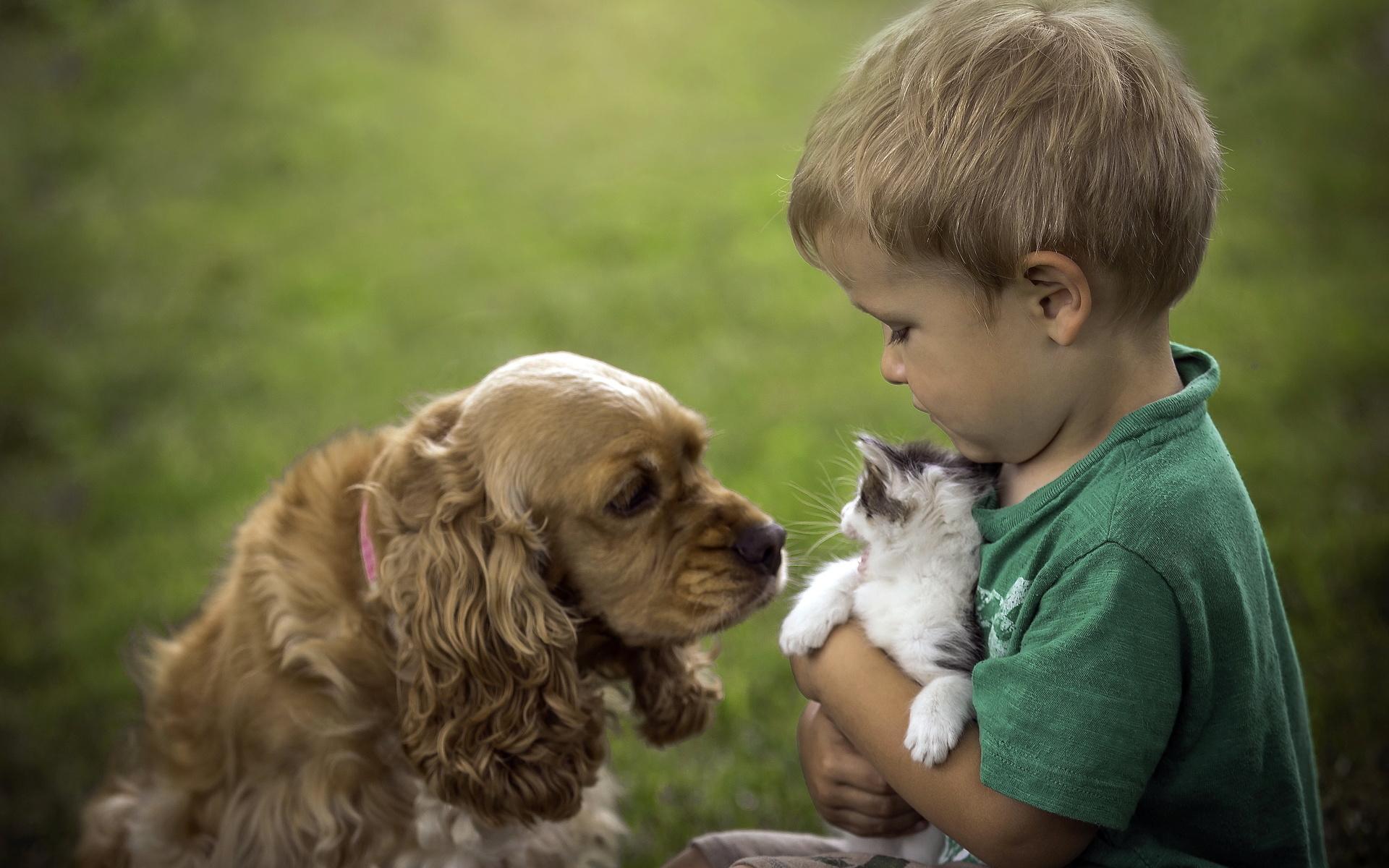 Картинка животные-друзья человека