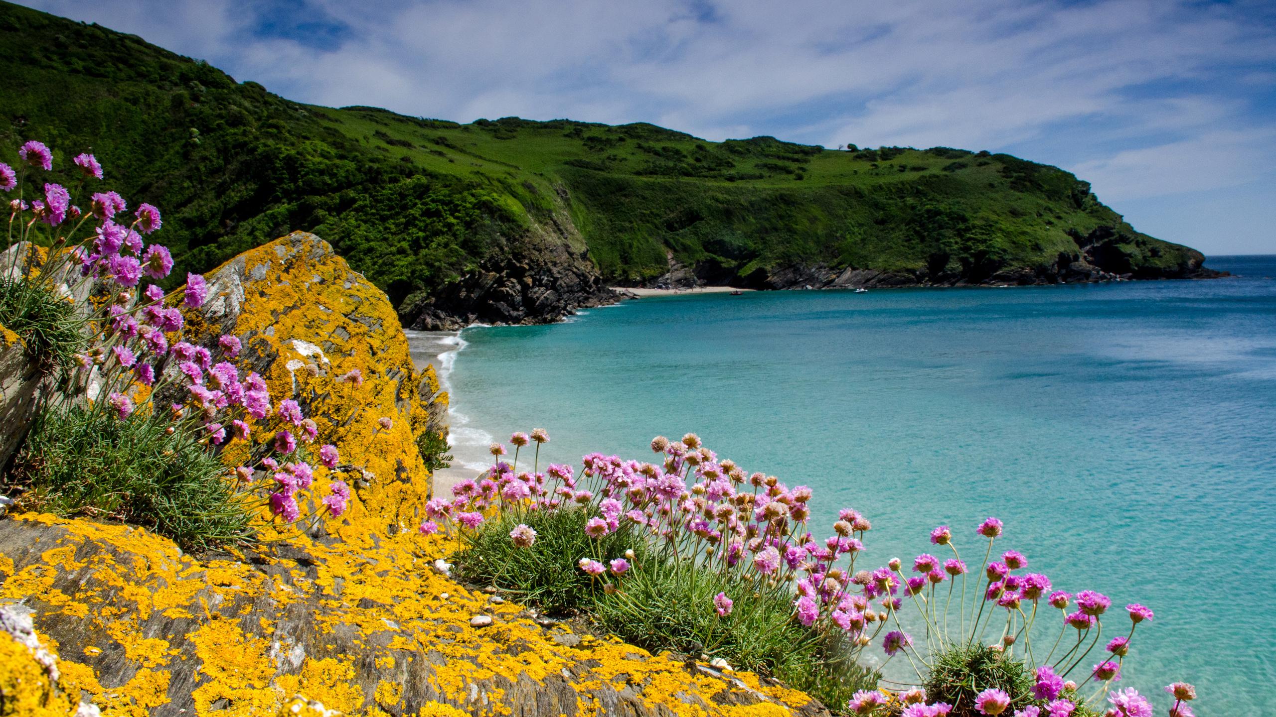 Фото картинки природы и моря