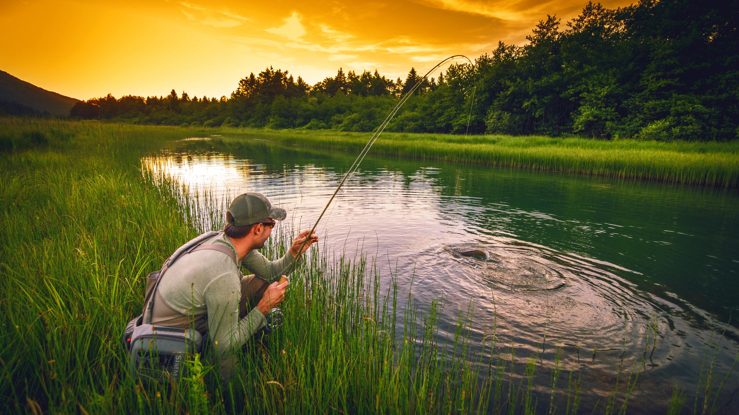 Фото открытки про рыбалку, хочу работу открытки