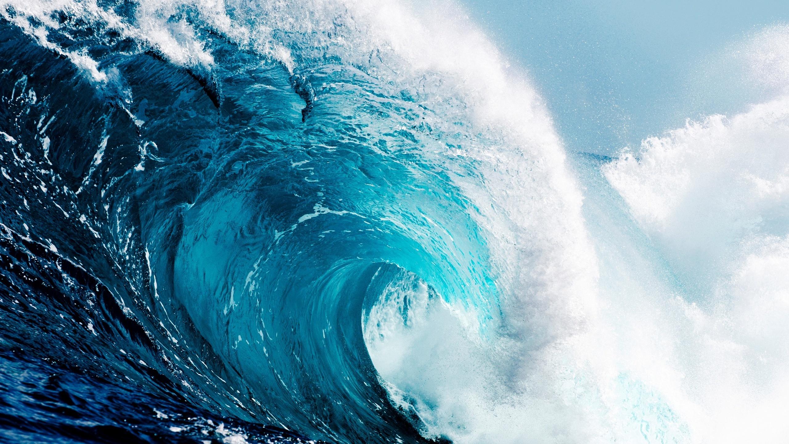 этой воды мирового океана картинки песку рознь, как