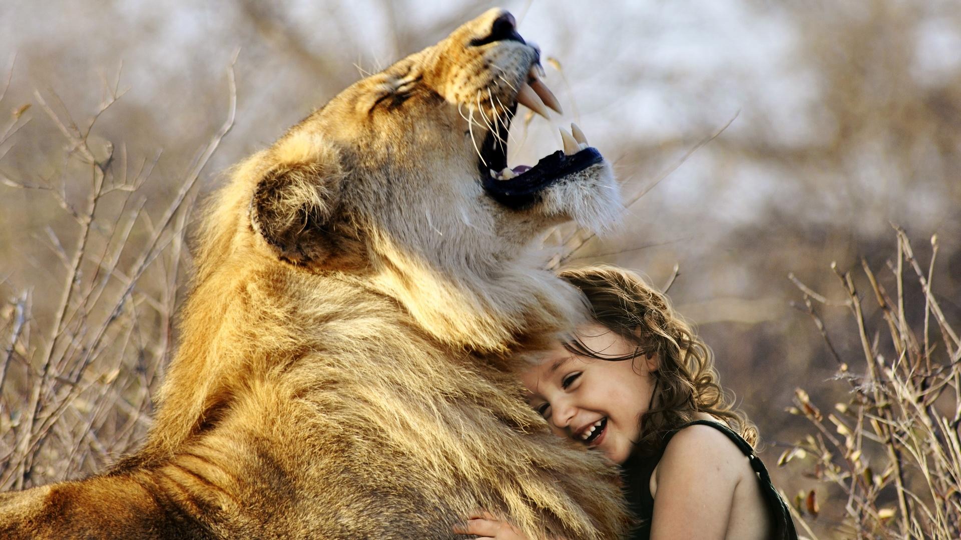 лев и его младенец картинки стопроцентный работе течение