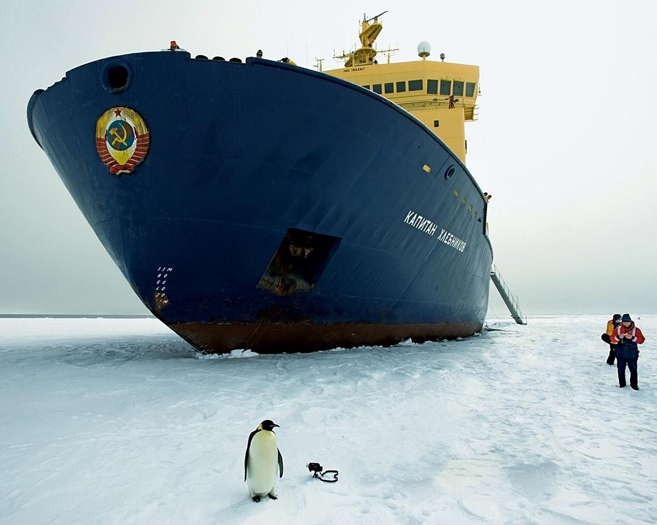 это прикольные картинки про корабли новой фотографии