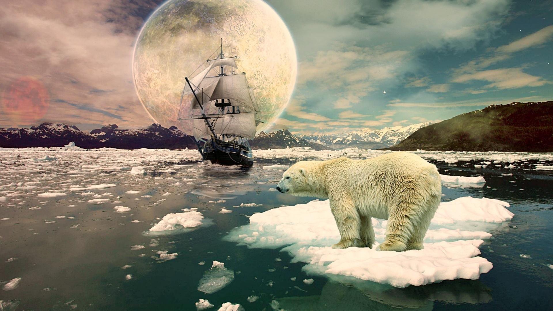 траве картинки белых медведей фэнтези приморского края