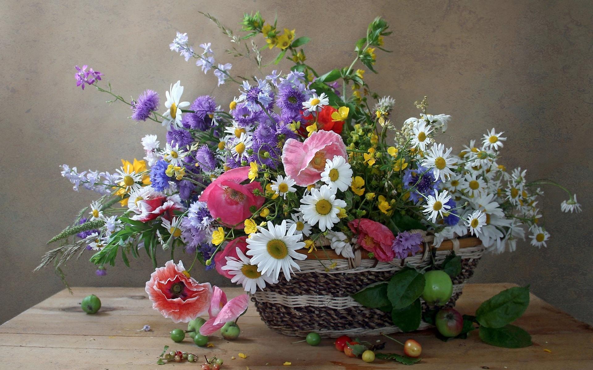 Чем прикол, полевые цветы в открытках