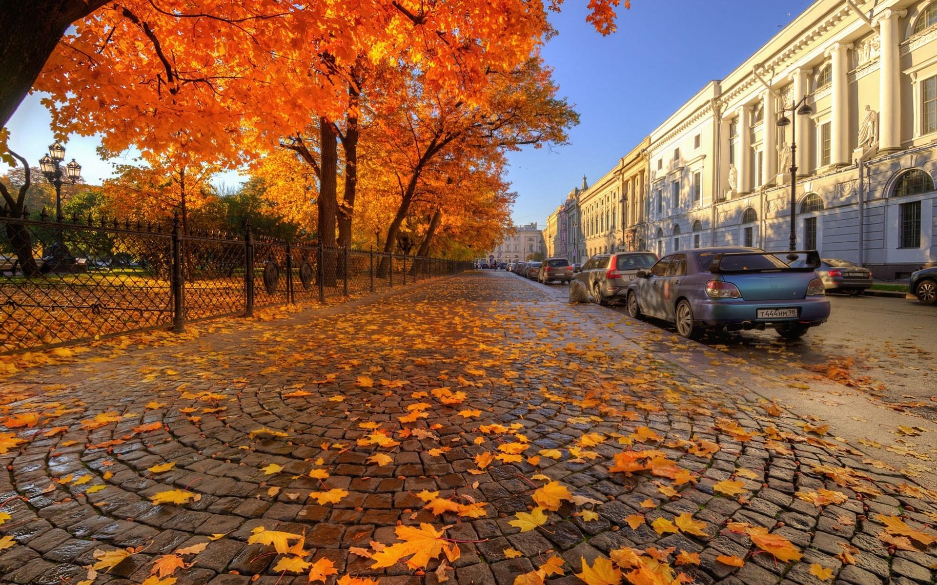Фотографии осень в городе