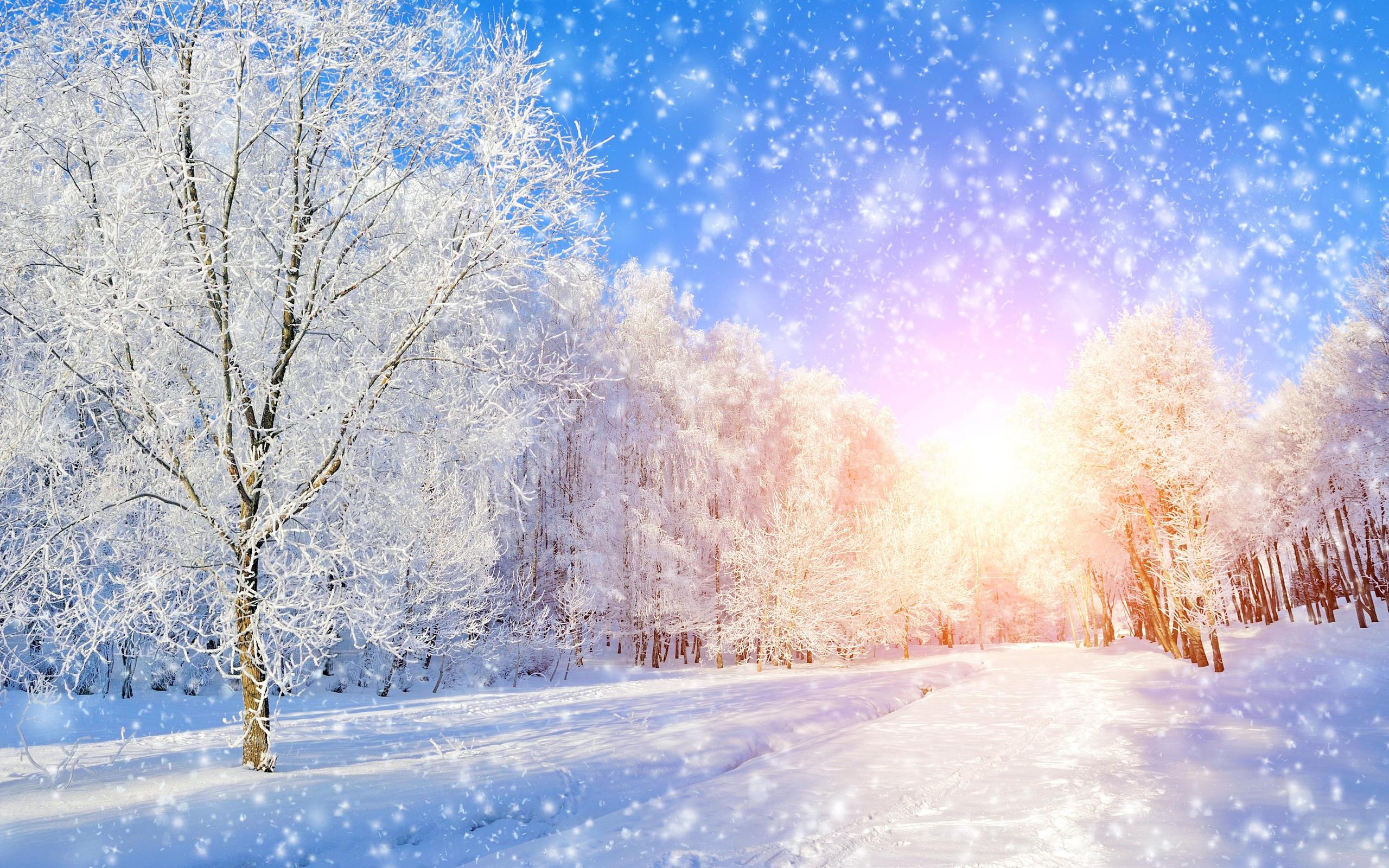 вымысел красивые картинки для фона зимние ход вступает