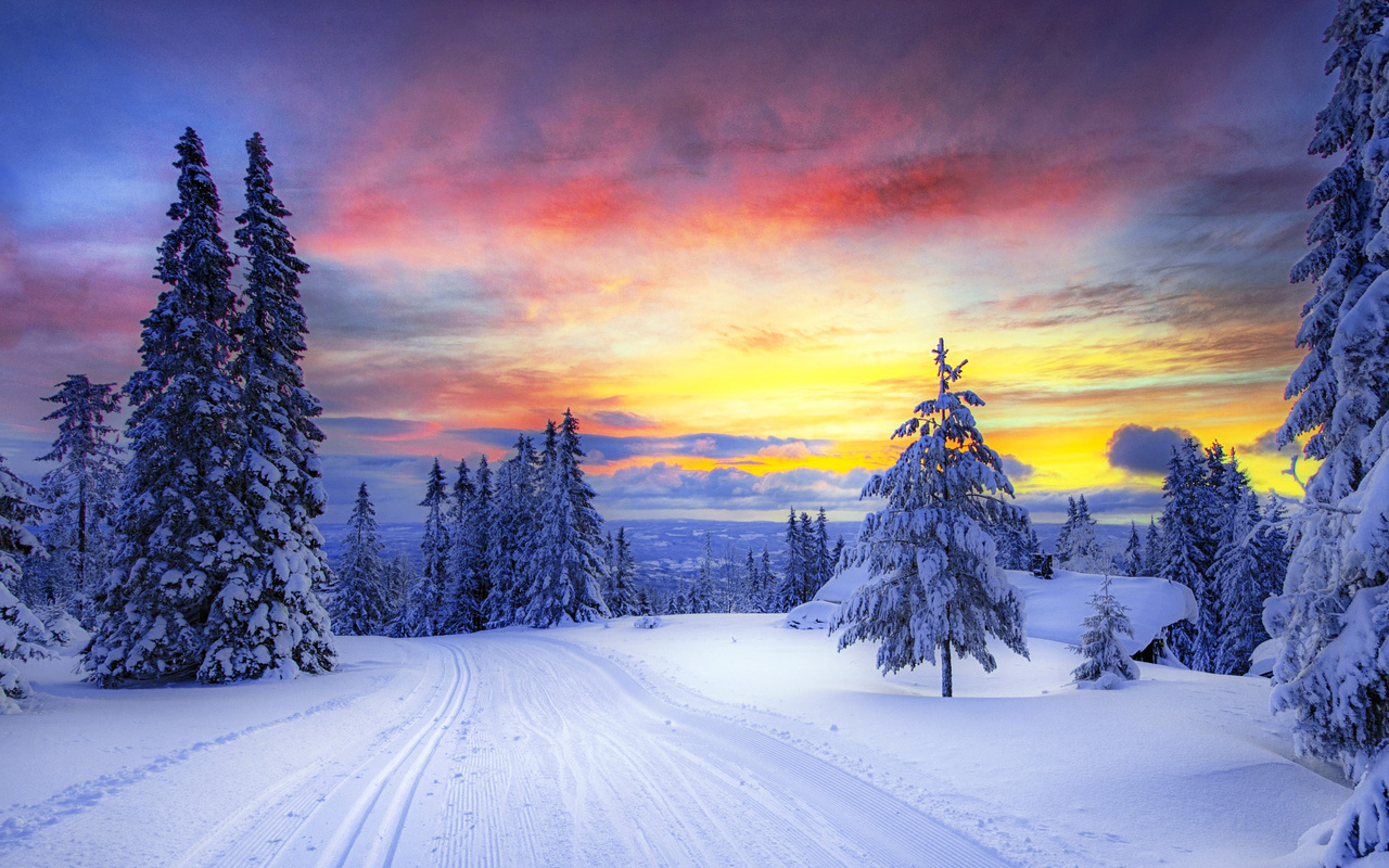 поражение пейзаж картинки природа зима кто-то
