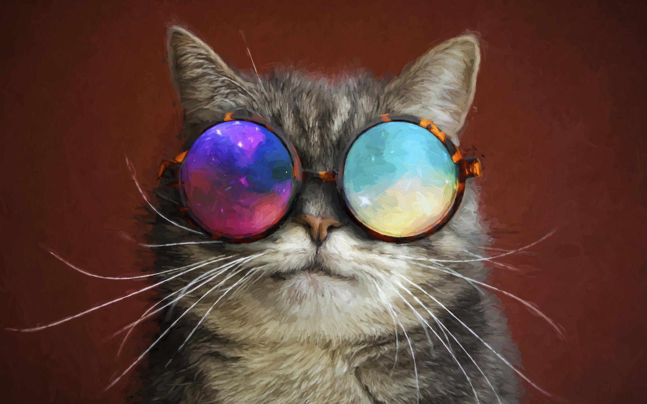 Картинки прикольные про котов в очках, переписки