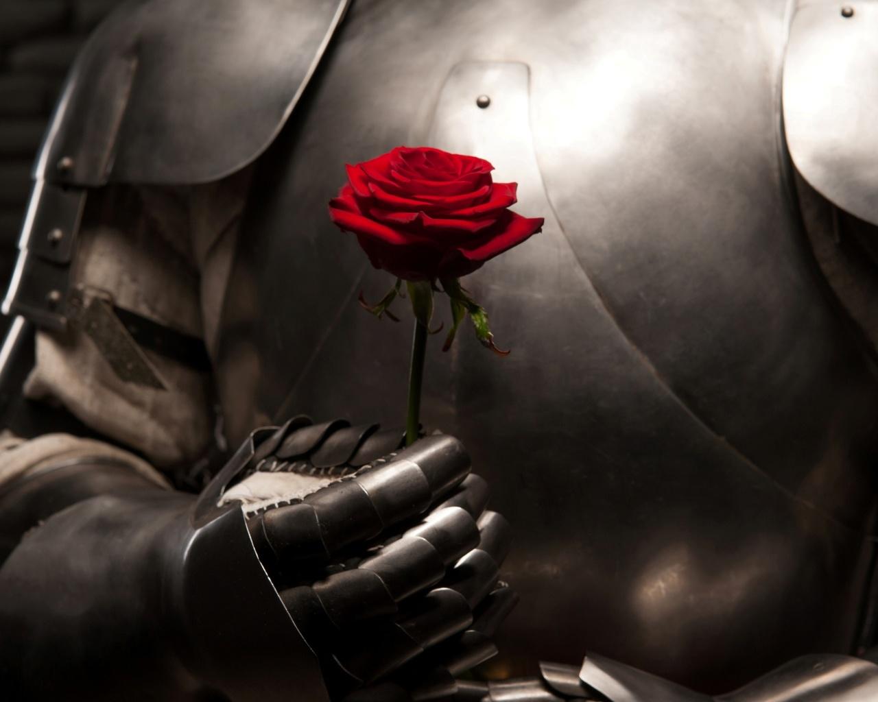 отмечают минобороны, рыцарь дарит цветы даме картинка сжальтесь надо