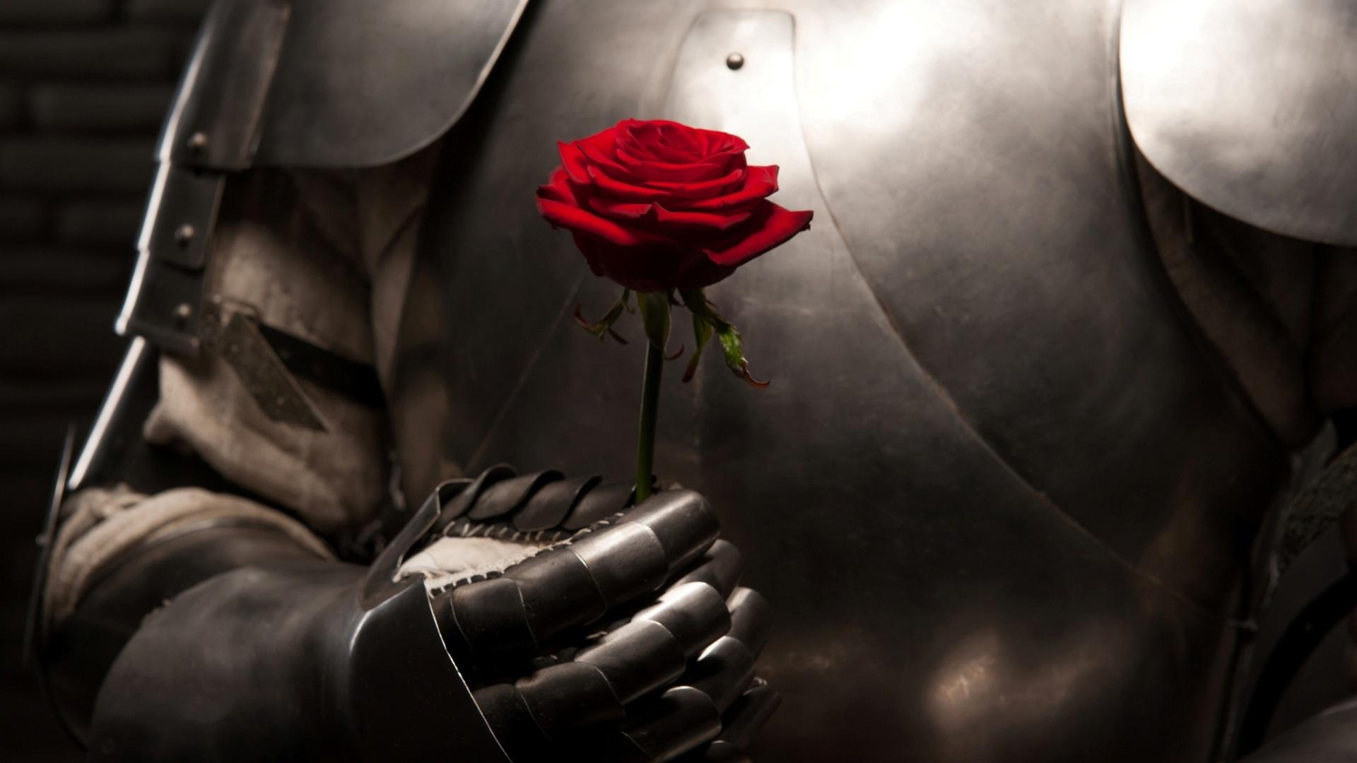 рыцарь дарит цветы даме картинка большие ягодки большую