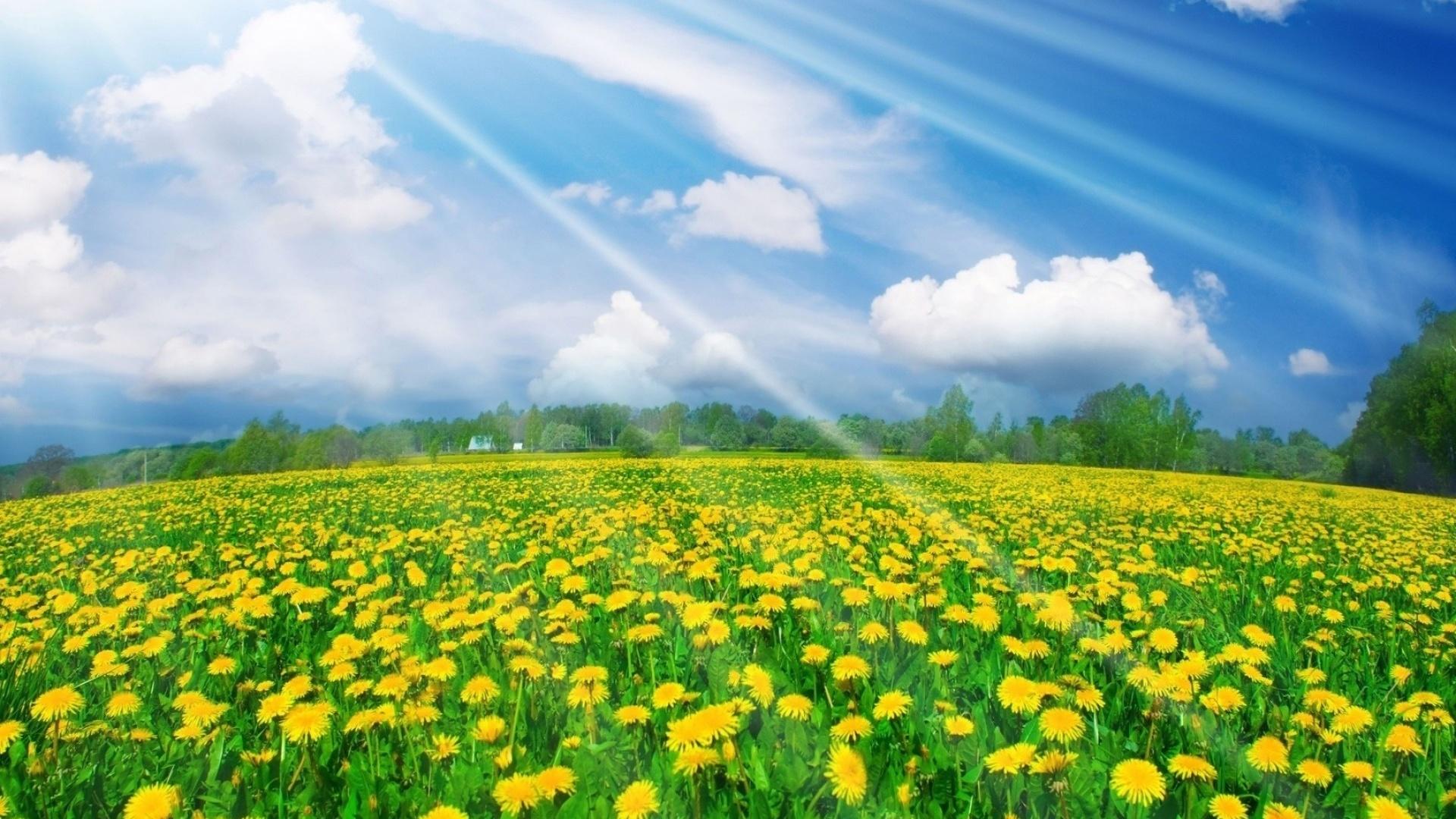 Картинки погода природа