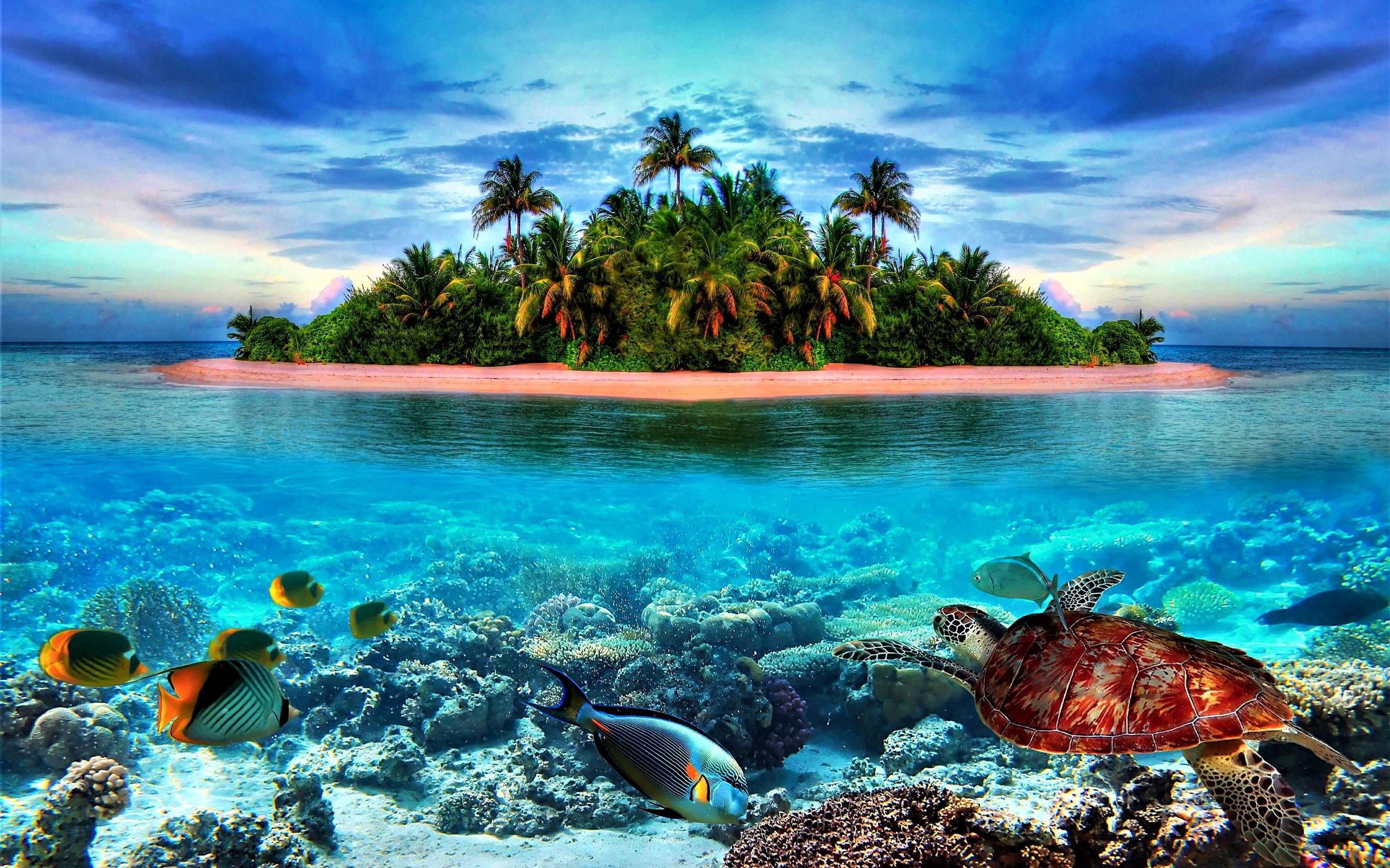 сидение прячет картинки райские острова осознать, какой была