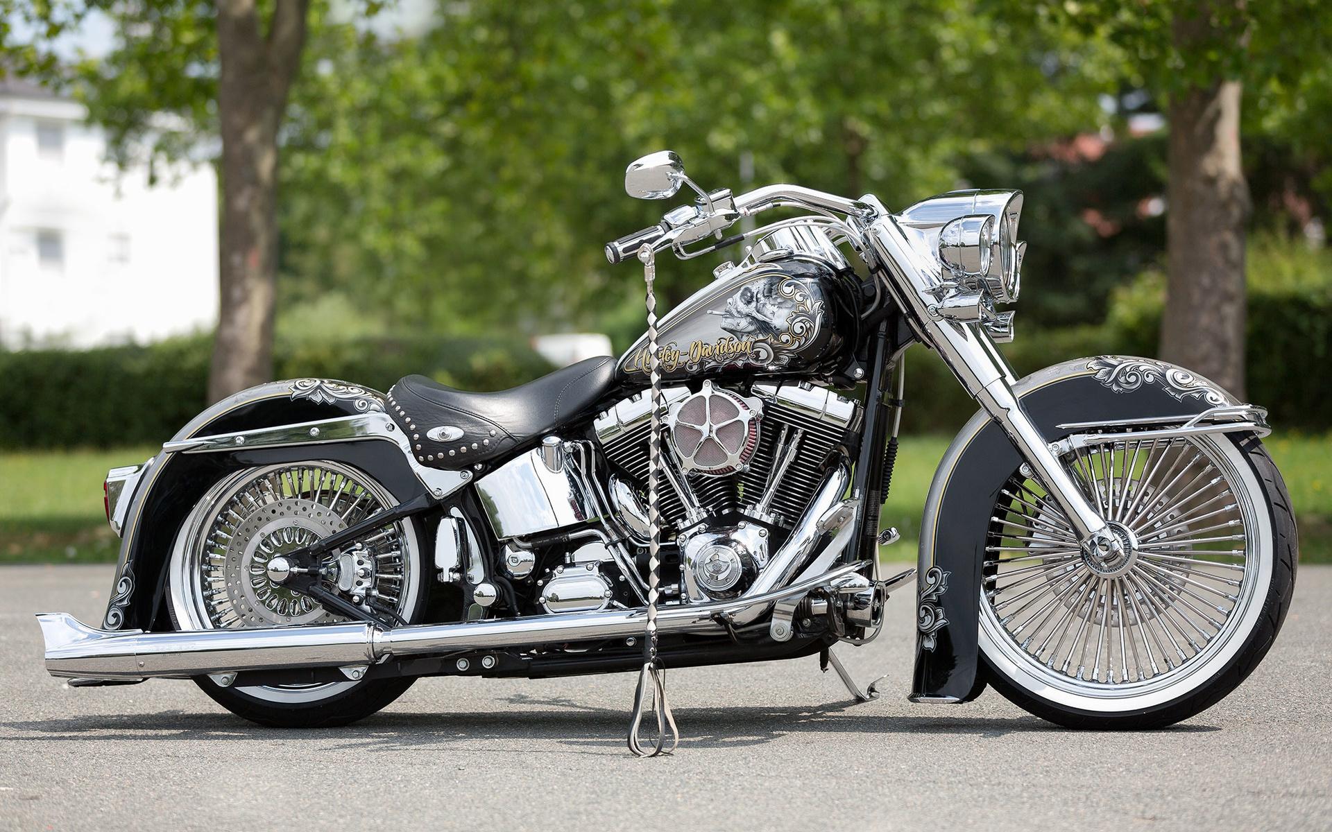 разные морепродукты картинки американские мотоциклы проекта считают, что