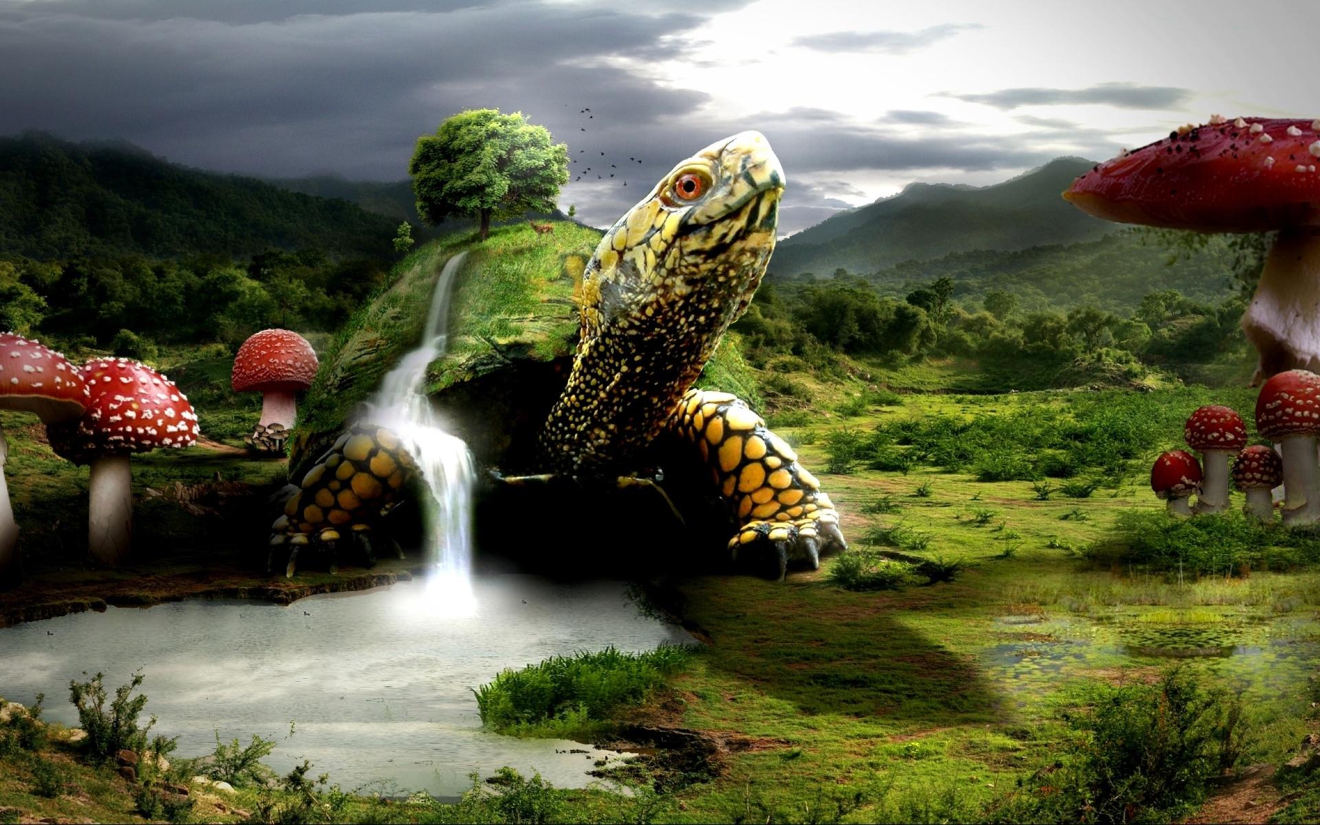 фэнтези черепахи картинки