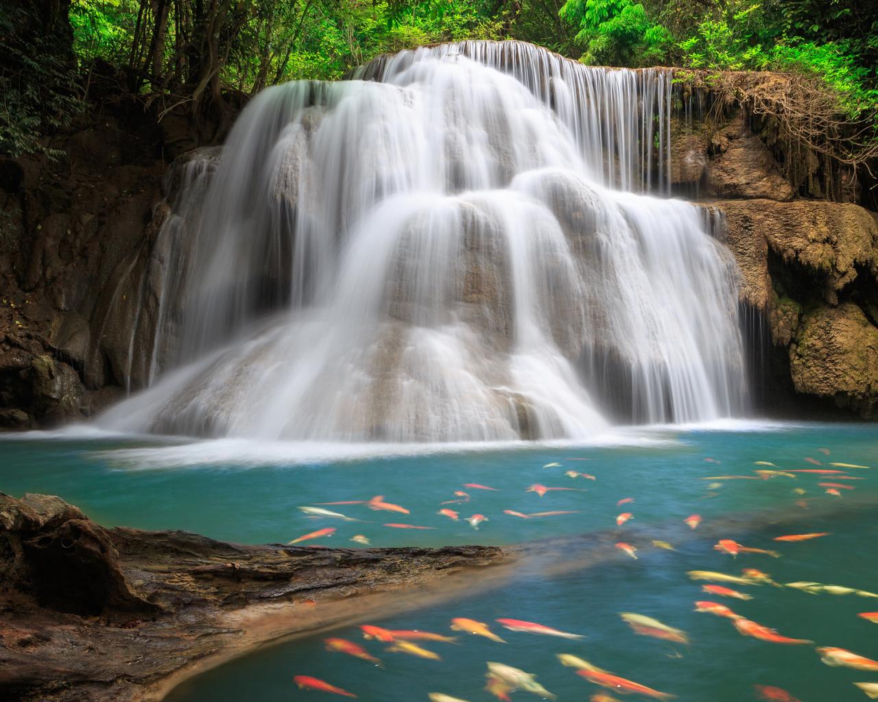 водопады картинки на аватарку успеха сериала тропиканка