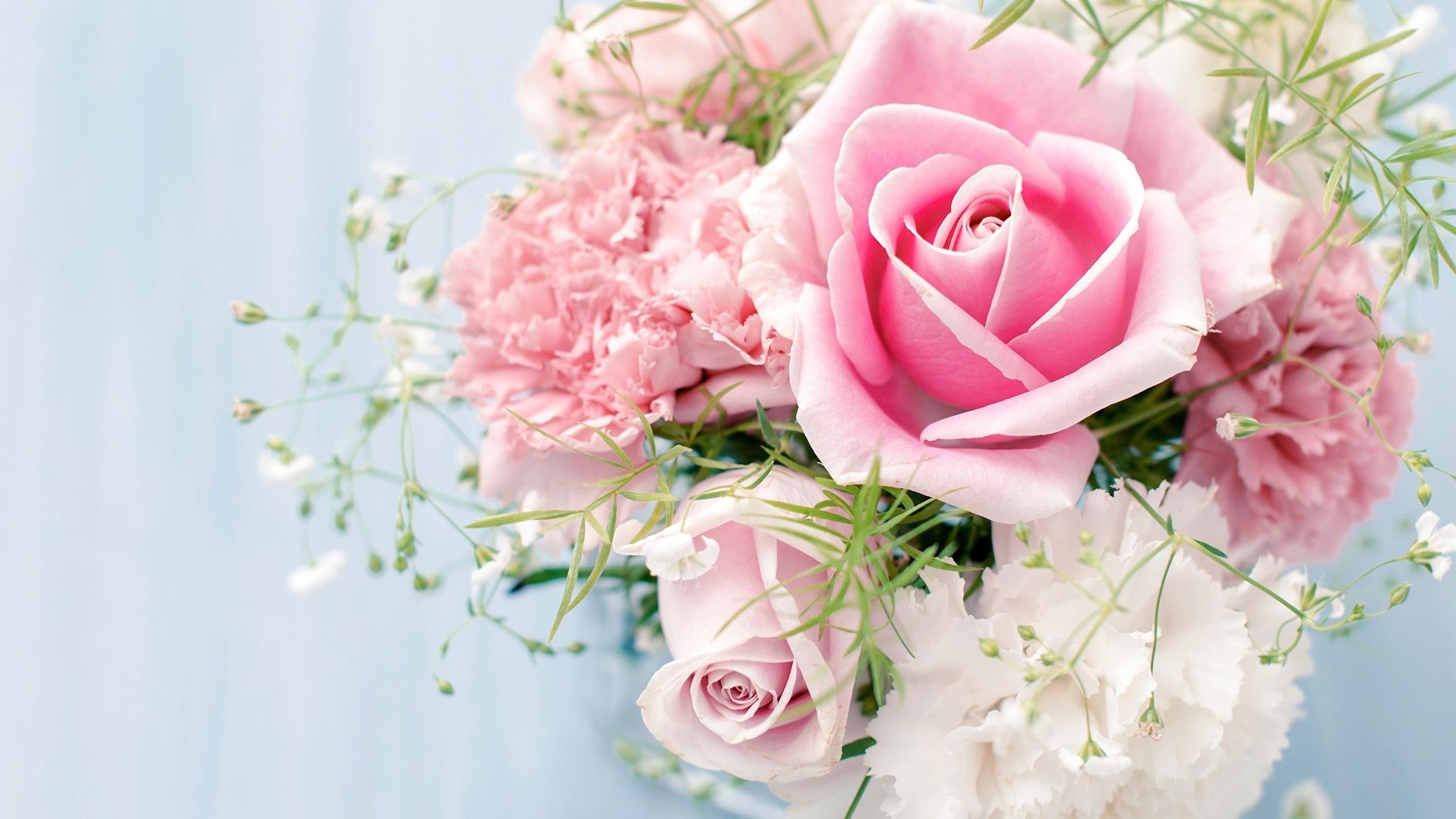 Картинки высокого качества нежные цветы снять порчу
