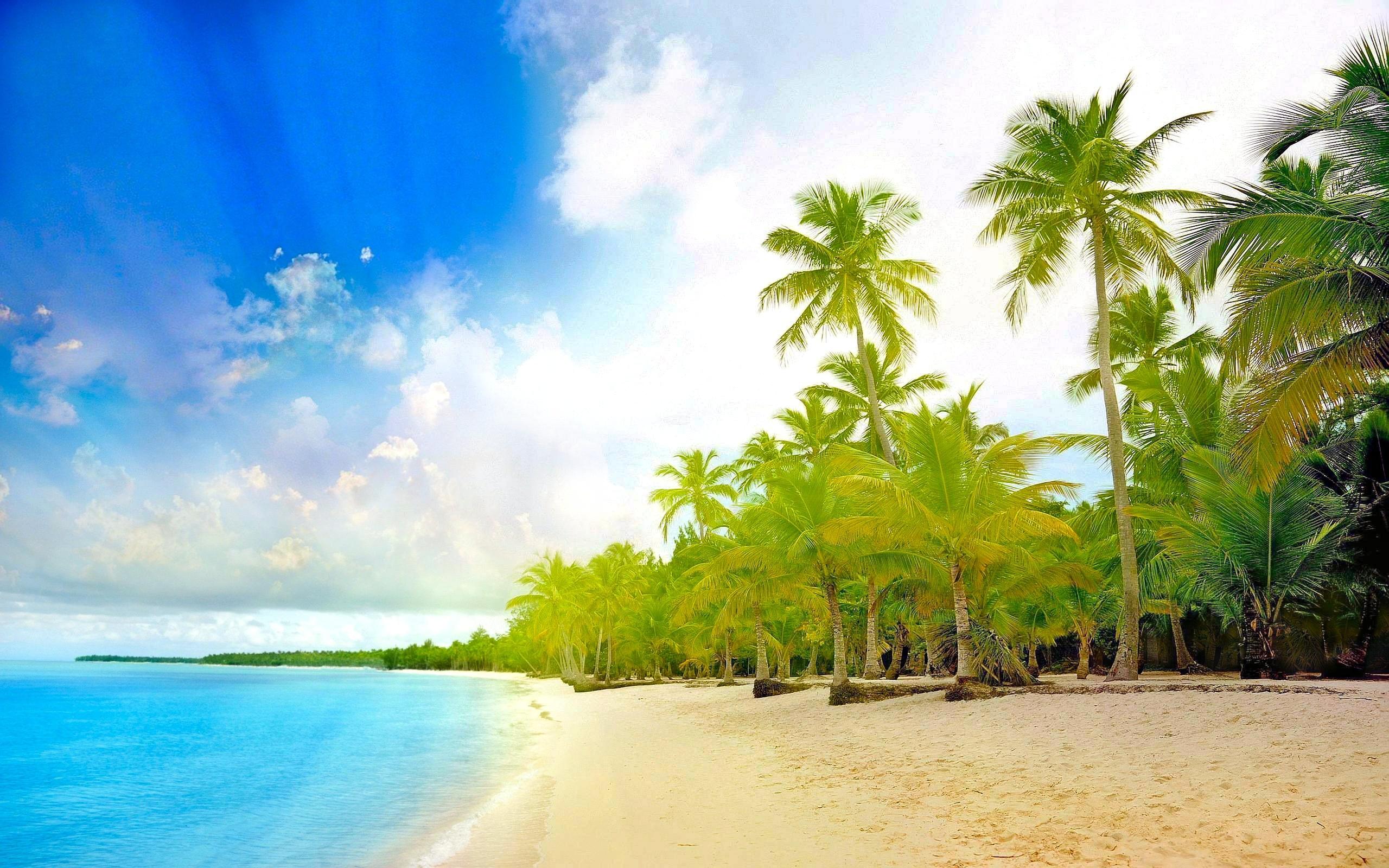 Картинки на рабочий стол красивые море пальмы