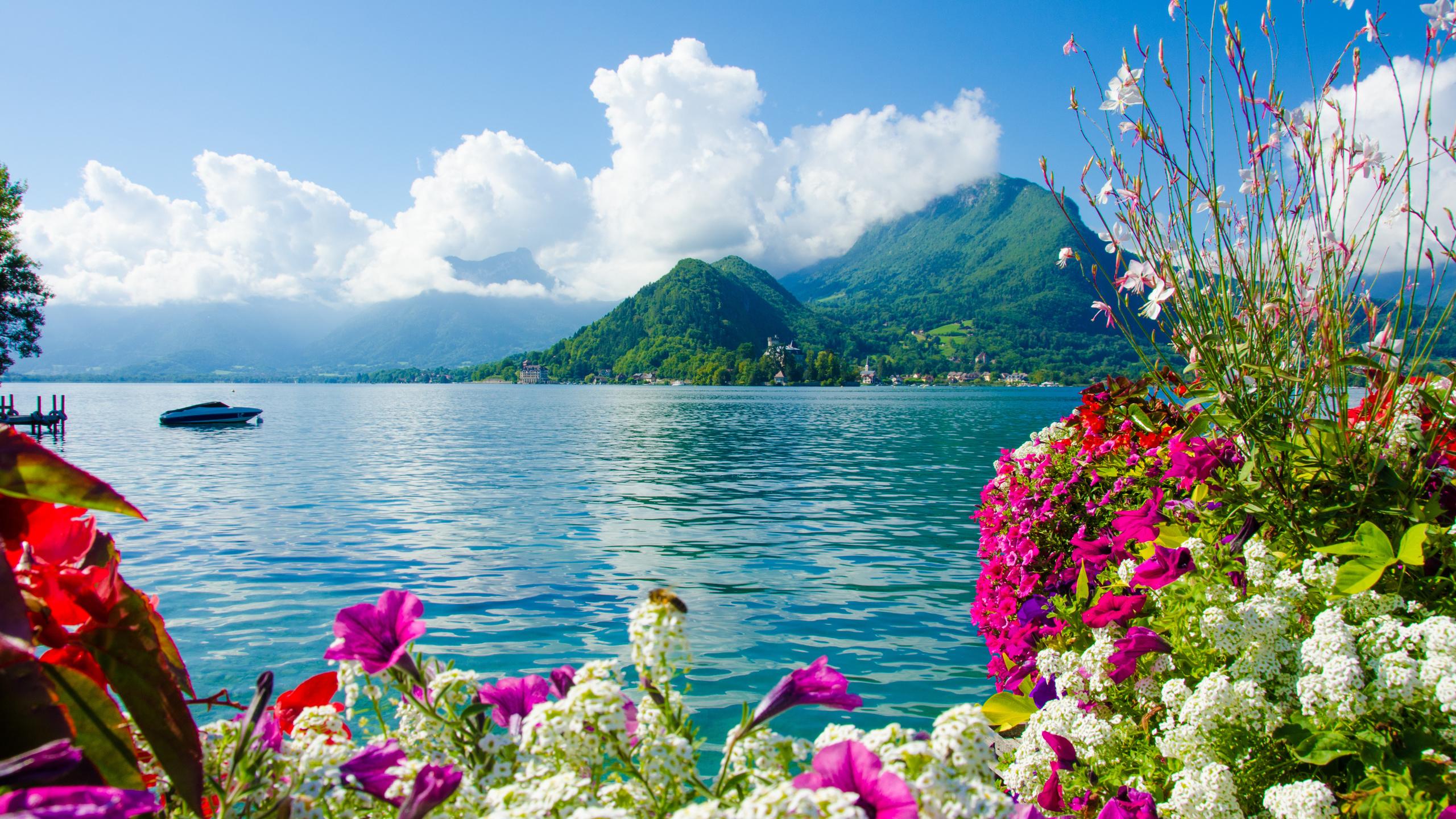 Пейзажи и цветы картинки фото