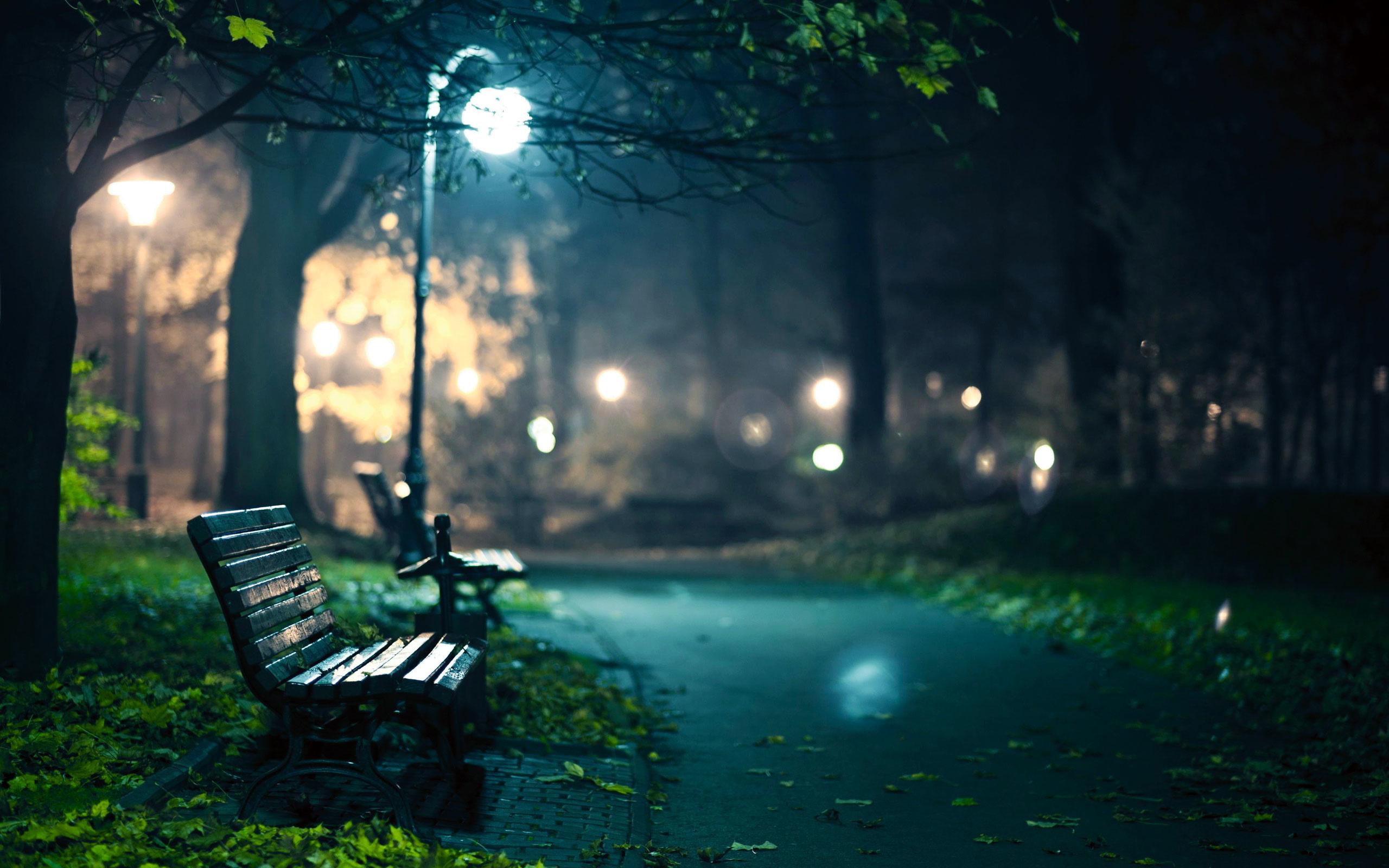 вербену картинки скамейка и дождь небольшой однокомнатной квартиры