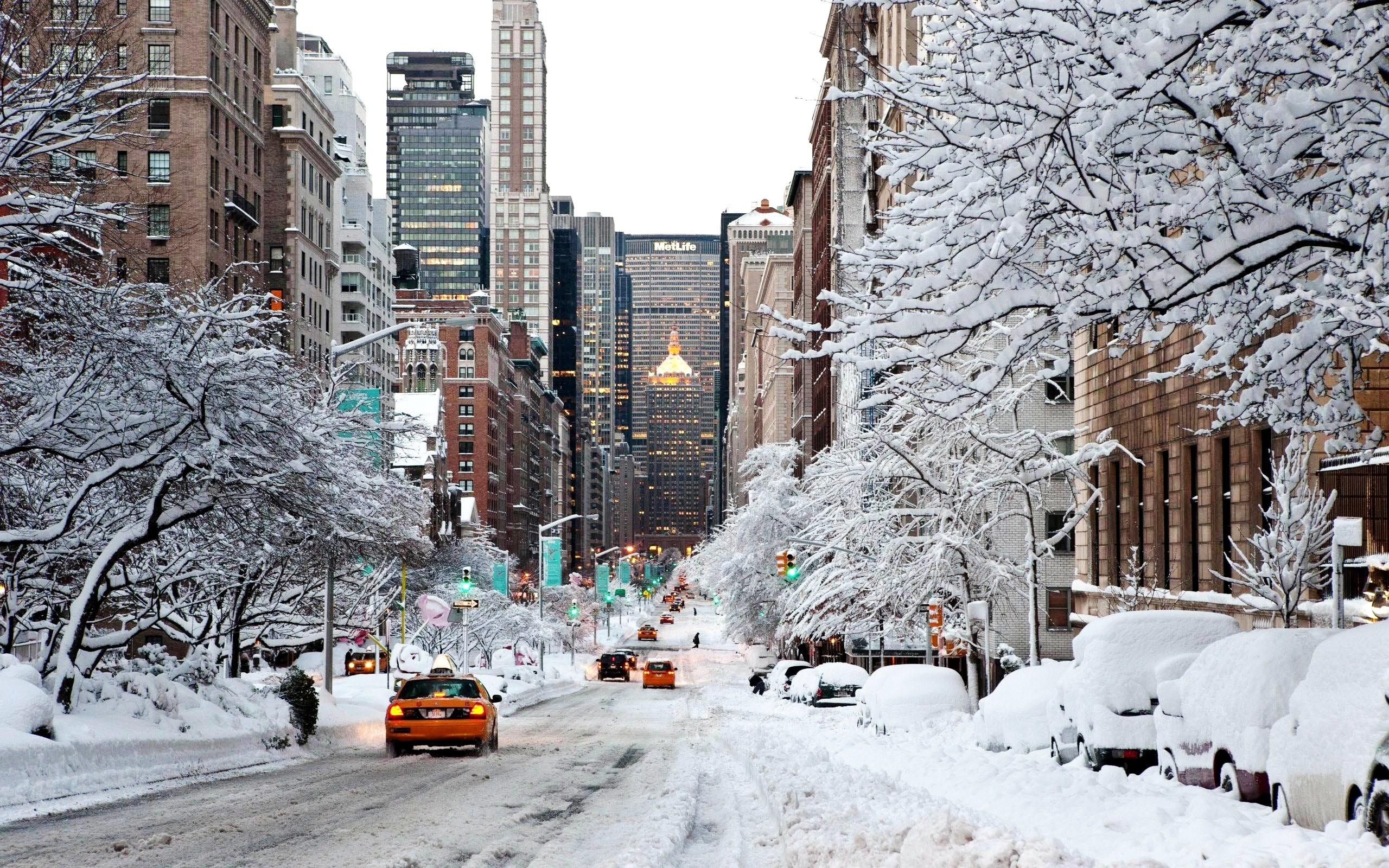 надежности можно картинки на телефон зимы в городе волка