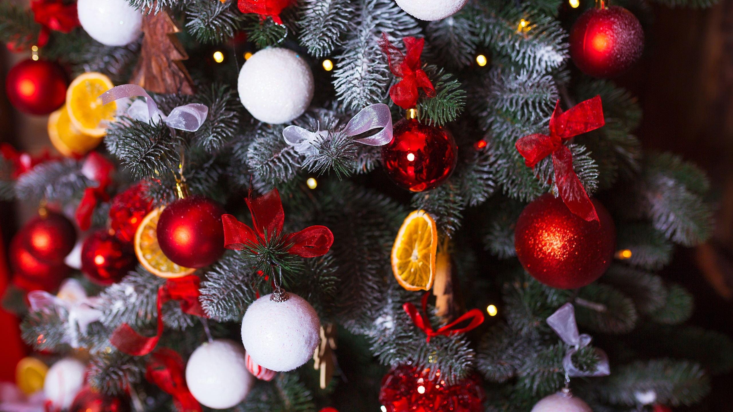 поразительной устойчивости фото елки новогодней на телефон подписи