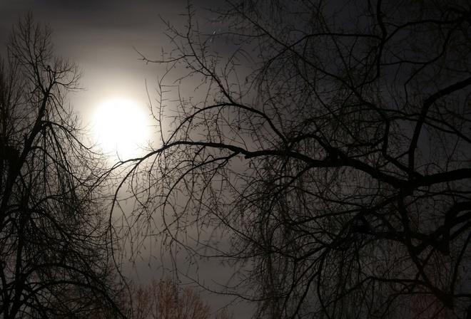 полночь мрак ночи сгустился экономный