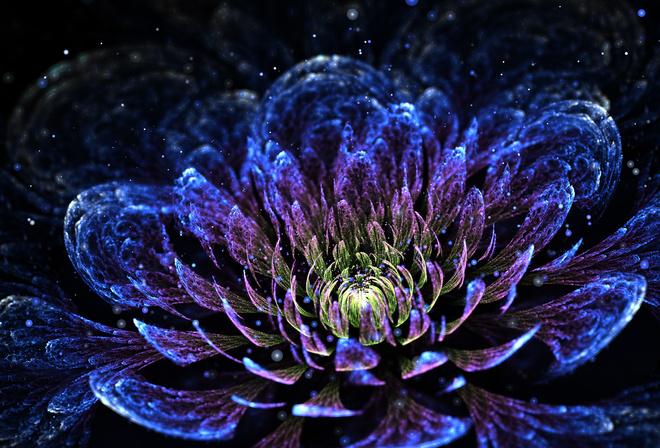 Картинка цветок лотос