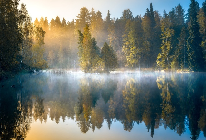 forest, autumn, dawn, Finland, lake, trees, fog, reflection, morning