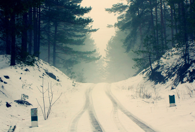 road, forest, snow, trees, branches, nature, fog, silence, frost, haze, pine, silhouettes, cold, the wheel marks