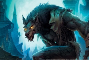 worgen, cataclysm, гилнеас, World of warcraft, blizzard, ворген