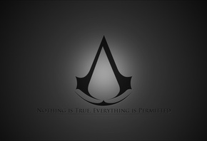 Assasins creed, братство, brotherhood, the game