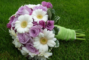 wedding, elegantly, cool, lovely, gerberas, nice, rose, roses, beautiful, f ...