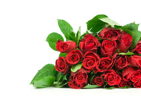 beautiful, roses, bouquet, rose, Flower, nice, flowers, cool, red roses, be ...
