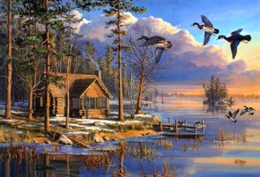 mary pettis, flying, Spring arrivals, sunrise, spring, lake, forest, house, ...