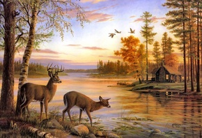 Quiet evening, painting, river, mary pettis, deer, birch, nature