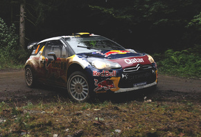 Citroen, ds3, rally, race, ралли, bull, wrc, лес, red, гонка, ситроен