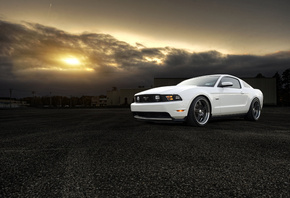 white, front, gt, 5.0, Ford, форд, mustang, muscle car, белый, мустанг