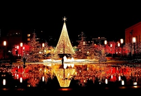 tree, christmas, light, city, night