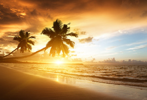 Caribbean, Ocean, sea, sunrise, sunlight, palms, clouds, sky, beach, shore, ...