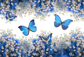 blue, white, flowers, blossom, butterflies, цветы, бабочки