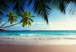 tropical, paradise, sunshine, beach, coast, sea, sky, blue, emerald, ocean, ...