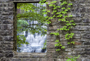 Waterfall, Nature, Landscapes, Wall, Stones, Leaves, Vines, Arkansas, U.S