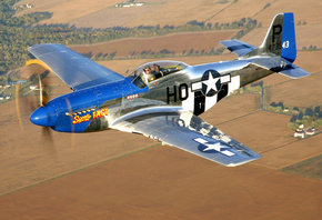 mustang, north american p-51, club, historical, military, american, the plane