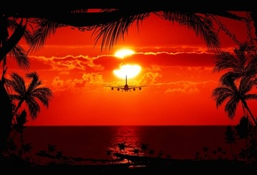aircraft, sunset, trees, sky