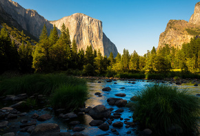 горы, долина, лес, Yosemite National Park, California, Калифорния, Sierra N ...