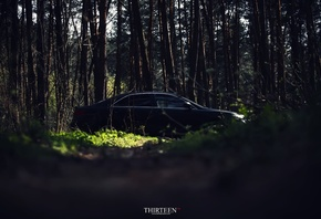 trees, photography, Thirteen, photographer, auto, machine, forest