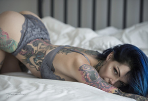 women, Jack Russell, in bed, ass, bottom up, tattoo, brunette, lingerie, blue hair, dyed hair, nose rings, piercing