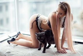 women, blonde, brunette, ass, hairband, long hair, dyed hair, lingerie, high heels, garter belt, cat, animals, on the floor