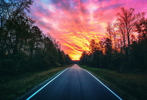 road, forest, sunset