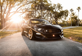 Ford, Mustang, Shelby, GT350, black